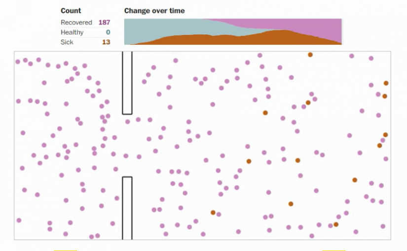 Great Example of Visualization: Comparing Different Responses to COVID-19
